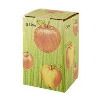 Bag in Box Karton Apfeldekor 3 ltr.