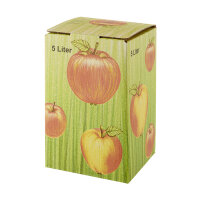 Bag in Box Karton Apfeldekor 5 ltr.