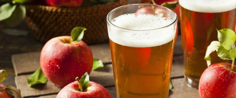 Alles für die professionelle Produktion selbstgemachter Cider